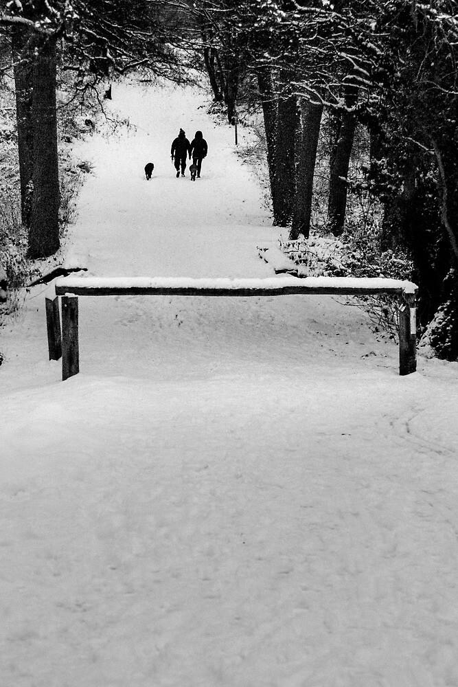 Winter Walk by redfibres