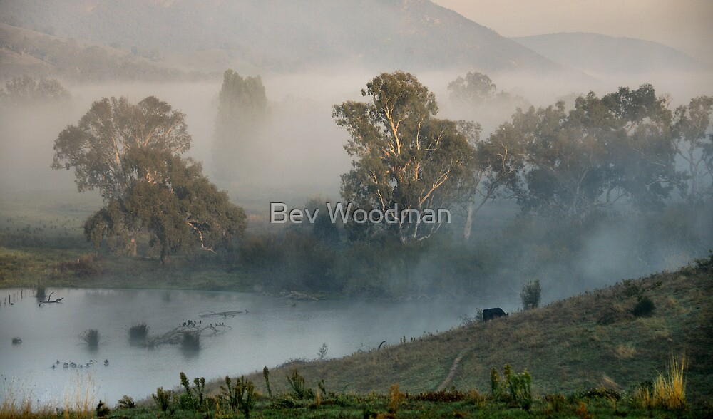 First Light on the Lagoon - Walwa Victoria by Bev Woodman