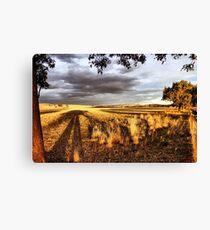 Stockinbingal Sunset # 2 Canvas Print