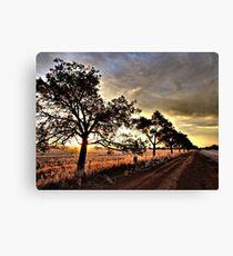 Stockinbingal Sunset # 3 Canvas Print