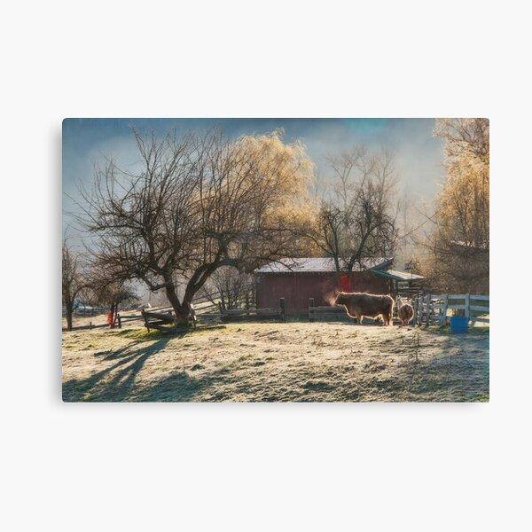 Morning Farmyard 1  Canvas Print