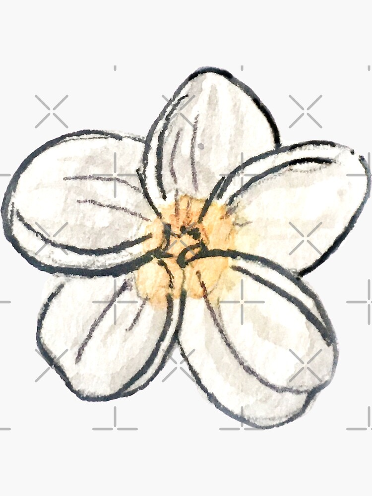 White Plumeria Flower in Watercolor - Tropical Flower by WitchofWhimsy