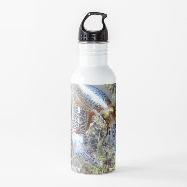 Watercolor Squid, Caribbean Reef Squid 01, St John, USVI, Iridescent Dreams Water Bottle