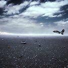 Desolate  by Yvonne Emerson