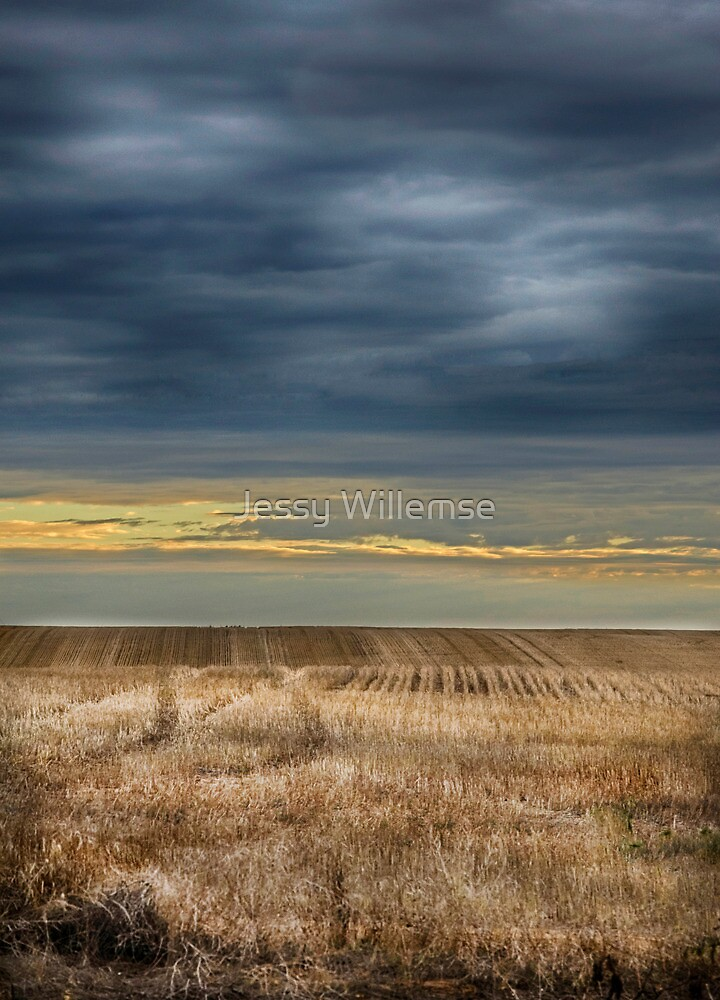 The Field by Jessy Willemse