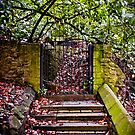 The Deans Steps Cardiff Wales by mlphoto