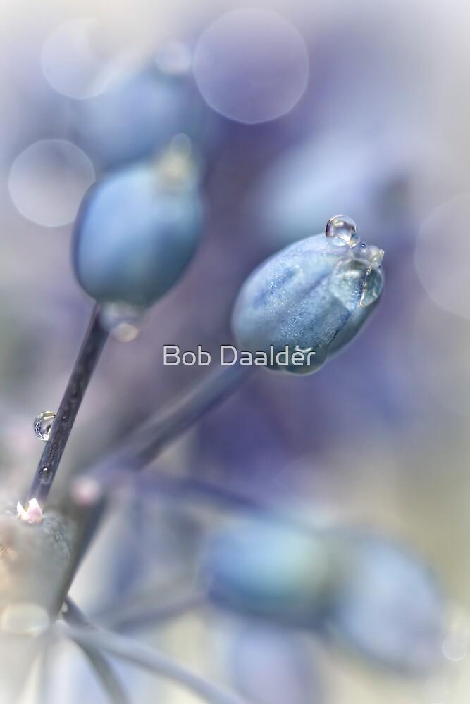 Underneath A Blue & Cloudless Sky ... by Bob Daalder