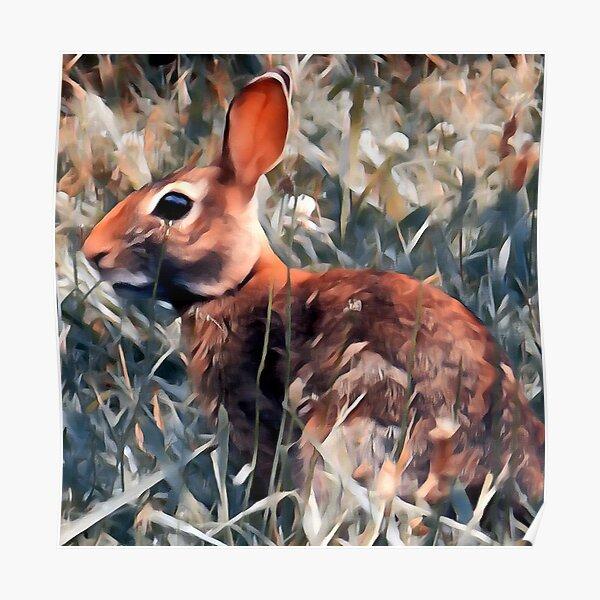 Woodland bunny rabbit Poster