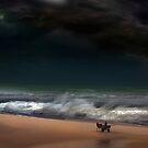 Stormy Ride by Igor Zenin