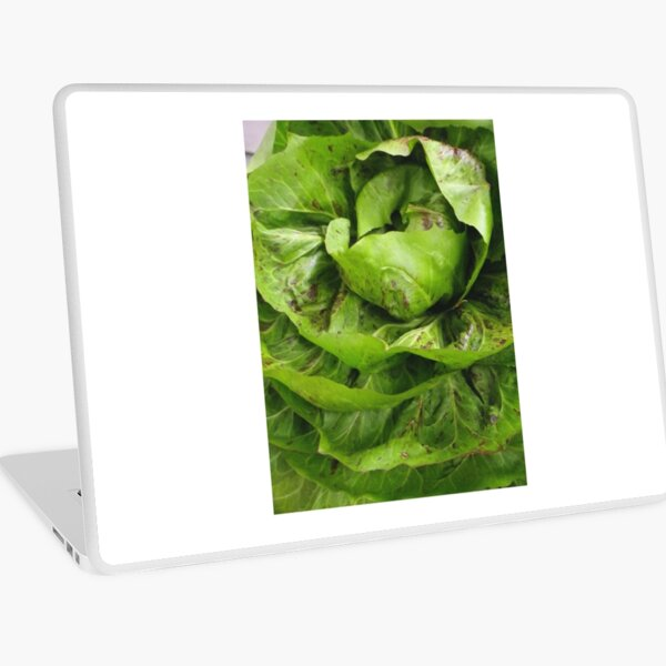 A Head of Lettuce Laptop Skin