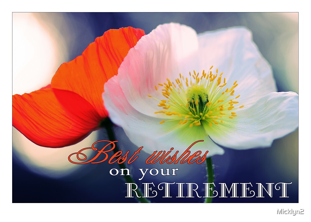 Quot Best Wishes On Your Retirement Poppies Quot By Micklyn2