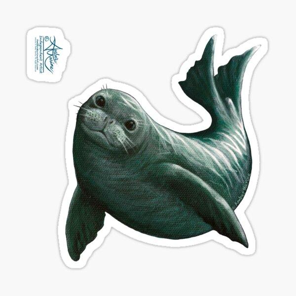 """Hawaiian Monk Seal"" by Amber Marine ~ Acrylic painting, art © 2015 Sticker"