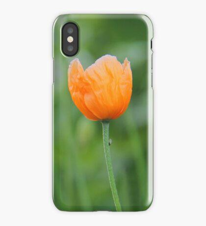 Orange Poppy #1 iPhone Case/Skin