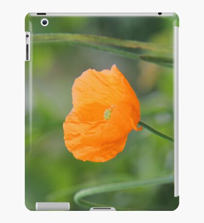 Orange Poppy #2 iPad Case/Skin
