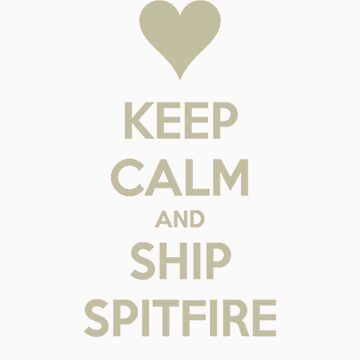 Keep Calm and Ship Spitfire Tee by asterousninja