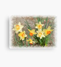 Spring, Take a Bow Canvas Print