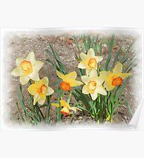 Spring, Take a Bow Poster