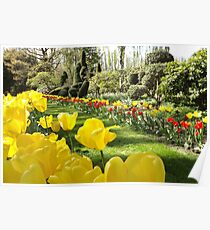 April Tulip Gardens Poster