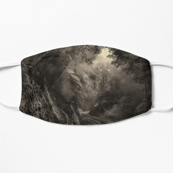 Steam and rainforest Small Mask