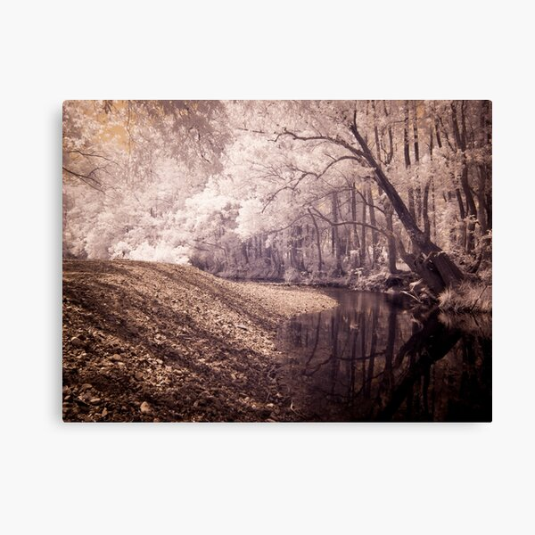 Never Never Creek Canvas Print