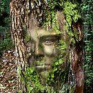 The Enchanted Tree by Mugsy