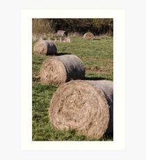 Hay Hay Hay Art Print