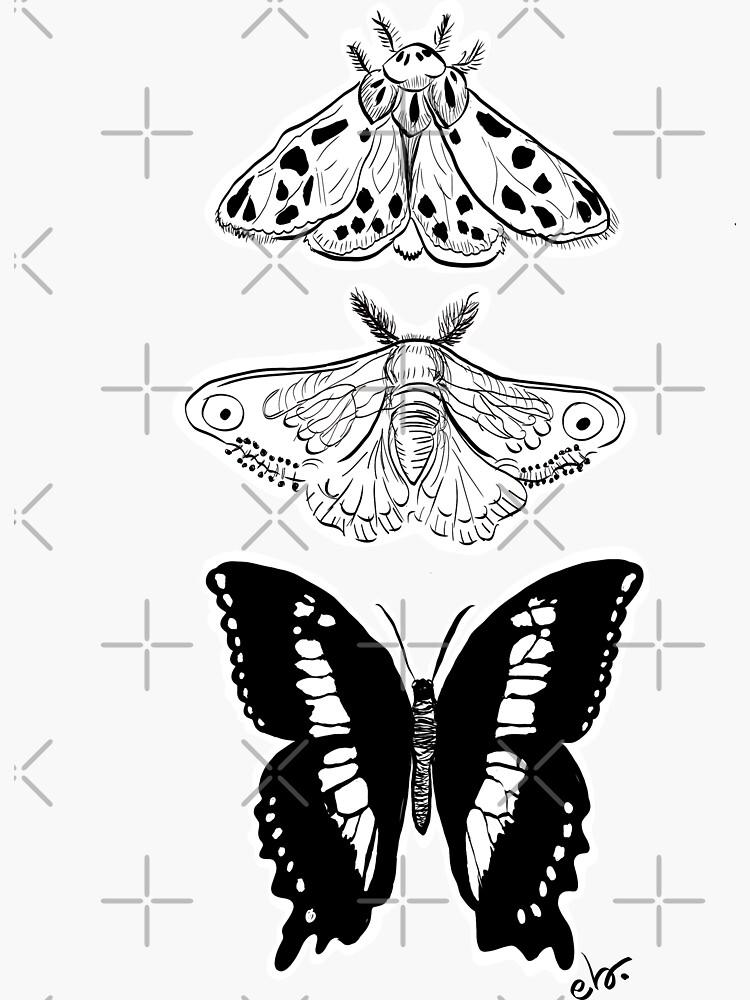 Butterfly & Moth _black and white palette by ebozzastudio
