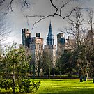 Cardiff Castle from Bute Park by mlphoto