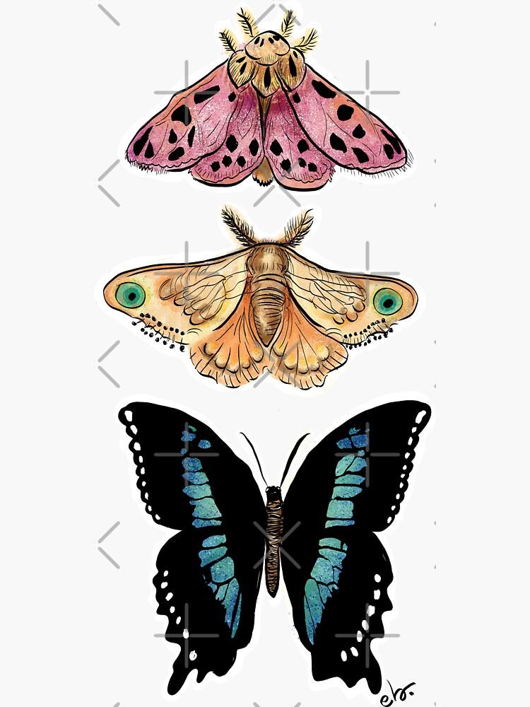 Magical Butterflies & moth by ebozzastudio