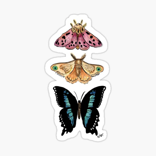Magical Butterflies & moth Sticker