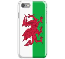Iphone Case - Flag of Wales  - Vertical iPhone Case/Skin