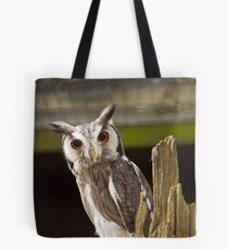 Northern White Faced Owl Tote Bag