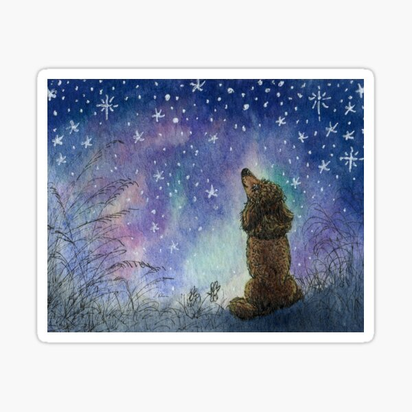 Poodle dog gazing at starry night sky, looking for inspiration Sticker