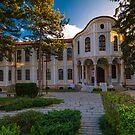 National Assembly of Bulgaria in Veliko Tarnovo by Ivo Velinov