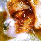 Electrifying Sleeping Puppy by daphsam