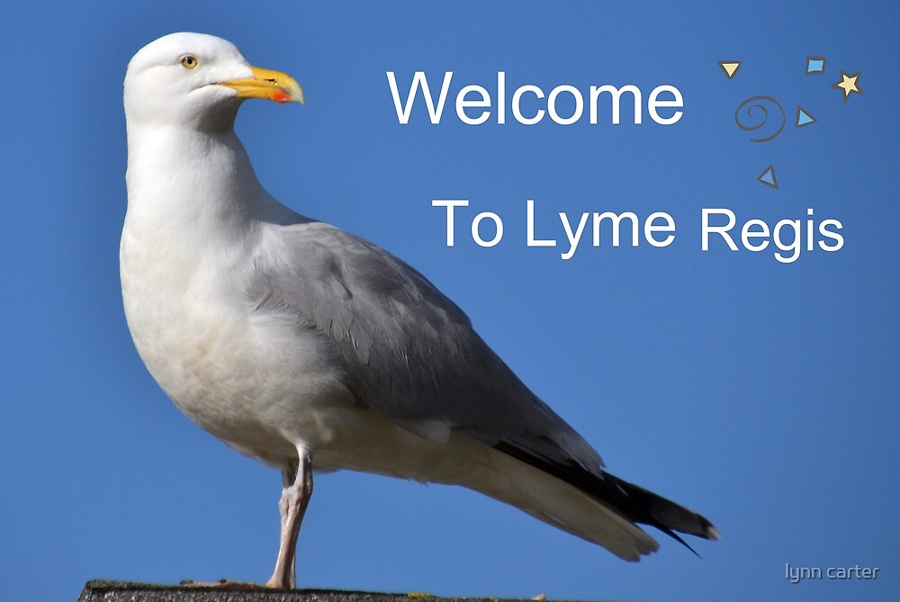 Welcome to lyme rb by lynn carter