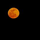 April Full Moon by Terri~Lynn Bealle