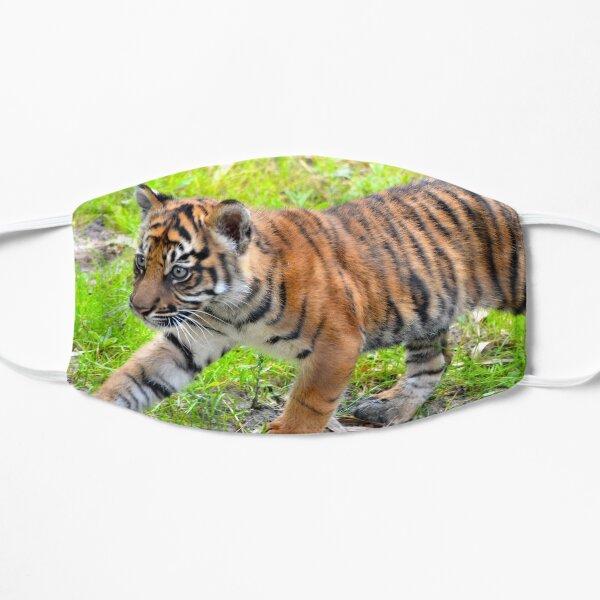 Sumatran Baby Tiger On the Run Mask