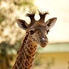 Masai Giraffe  (Baby) by cs-cookie