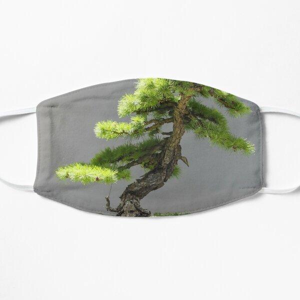 Japanese Bonsai Flat Mask