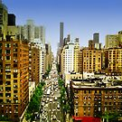 New York - View from the Roosevelt Iceland Tramway by harietteh