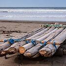 Fishing Raft - Playas, Ecuador by Paul Wolf