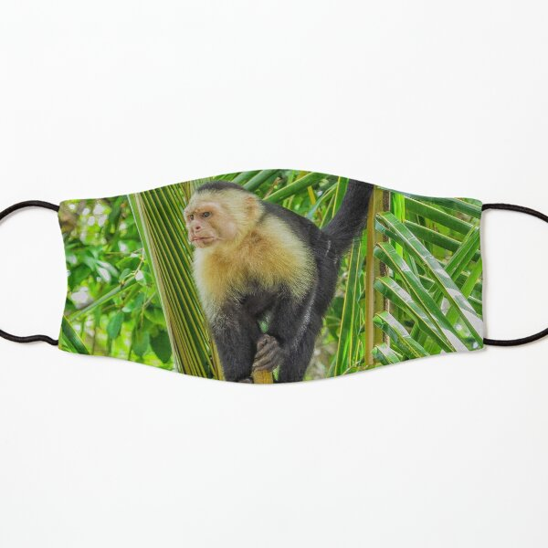 White faced monkey in a tree Kids Mask