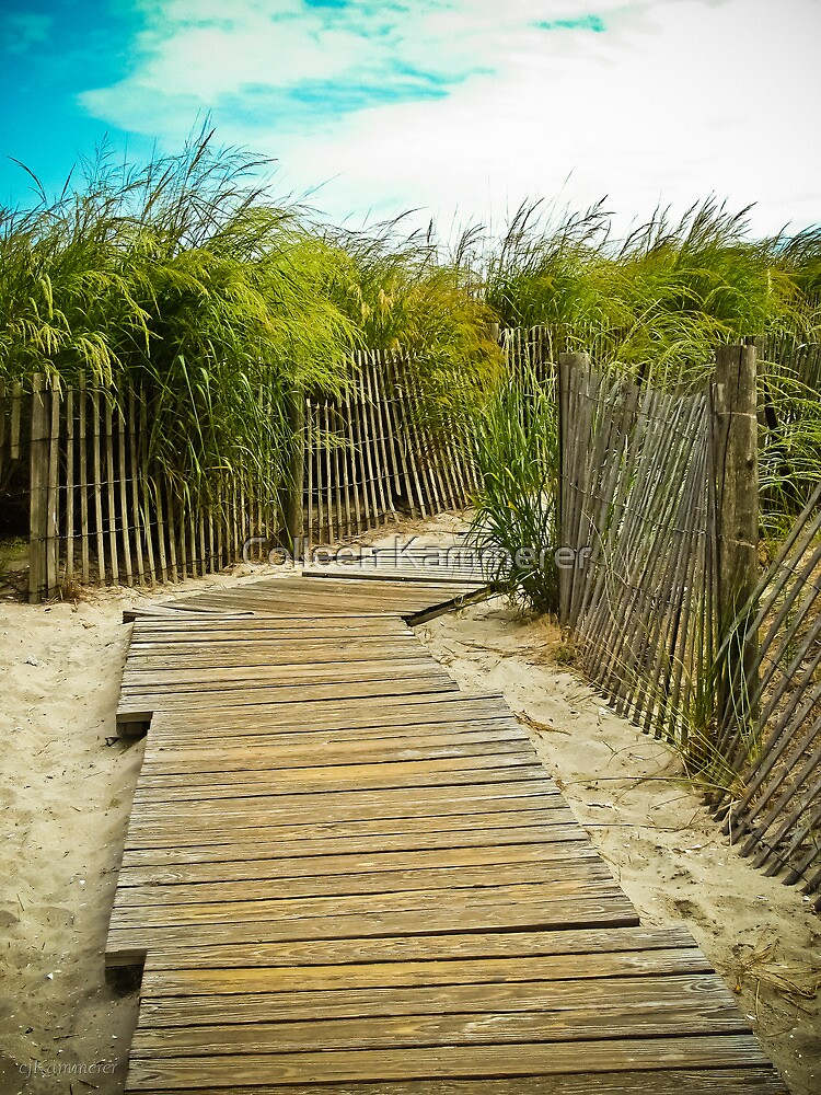 A Walk to the Beach by Colleen Kammerer