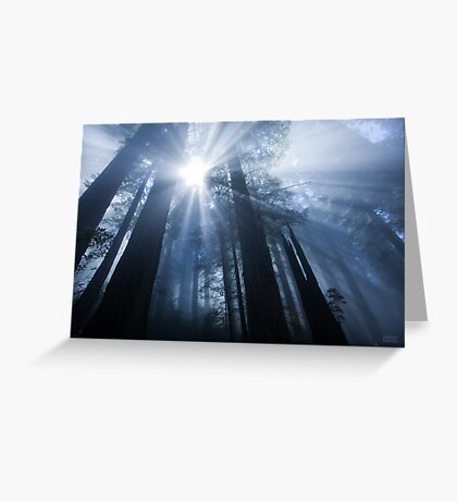 Enchanted Forest III Greeting Card