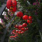 Paper Lanterns by Keith G. Hawley