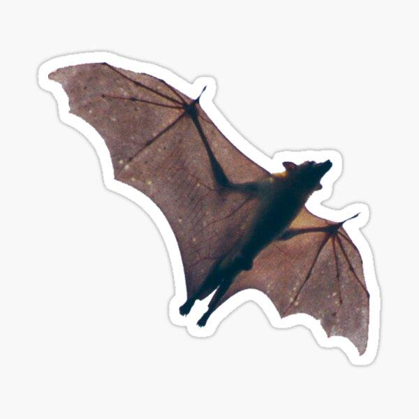 Batzilla -funny idea Miss Freya's lip smacking pear by Batzilla ,  flying fox funny Sticker