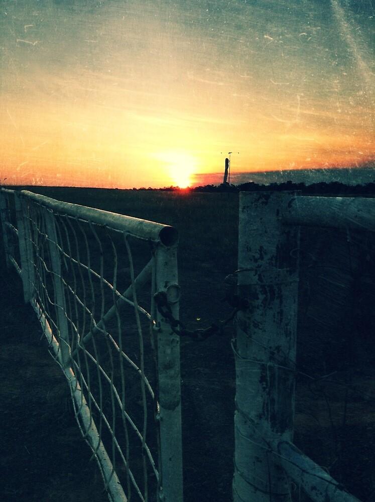 Bush airstrip at dusk by Rebecca Schultz