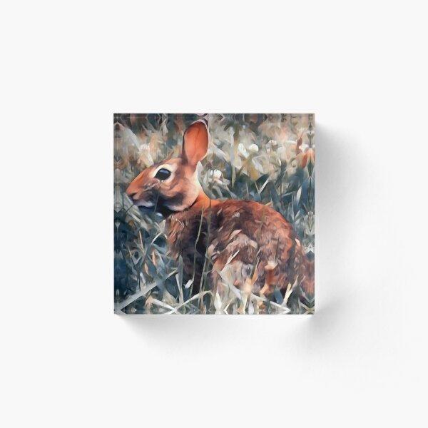 Woodland bunny rabbit Acrylic Block