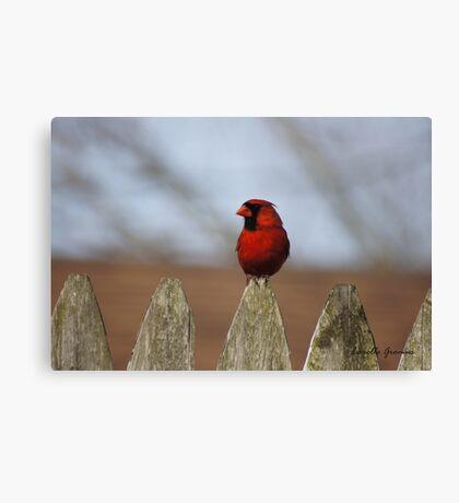 Glamorous Red Canvas Print